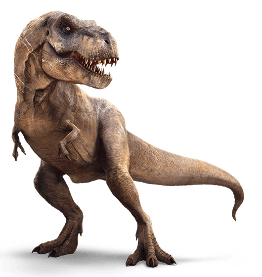 Tyrannosaurus rex | Tyrannosaurus, Jurassic park and Website