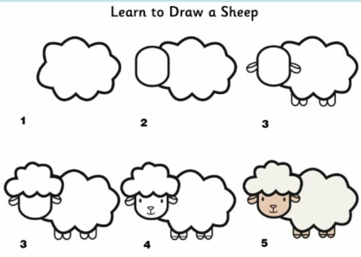 How To Draw A Sheep Artsy How To Pinterest Sheep Drawing