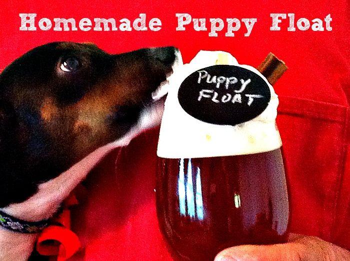 Homemade Puppy Float W Pedigree Dentastix Sharefunshine Ad Puppies Homemade Dog Food Pets