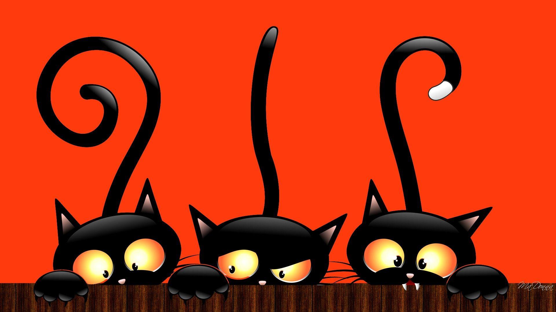 Desktop Hd Wallpaper Halloween Original Size Cat Wallpaper Halloween Cat Whimsical Halloween