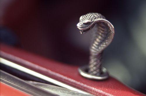 Cobra Door Lock Mustang Gt 350 Mustang Shelby Cobra Mustang