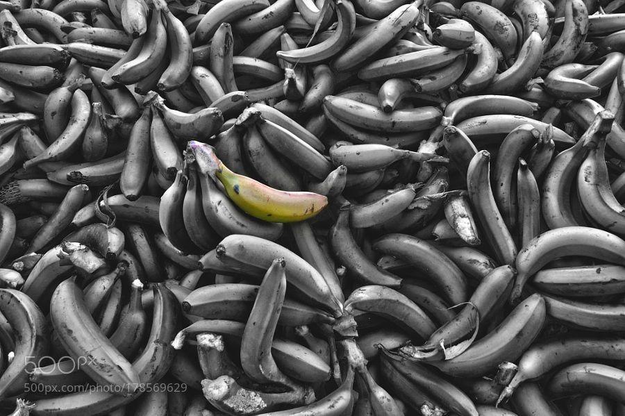 Got Banana? by sergioabalo
