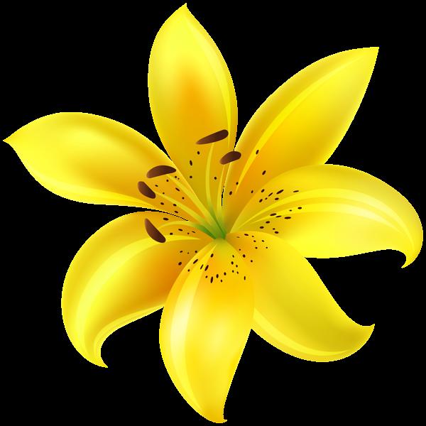 Yellow Flower Clip Art Image Digital flowers, Flower