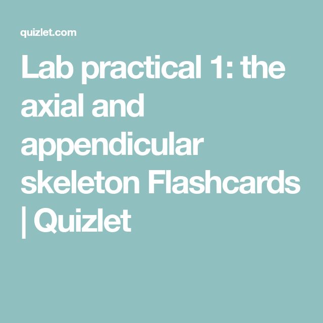 Lab practical 1 the axial and appendicular skeleton