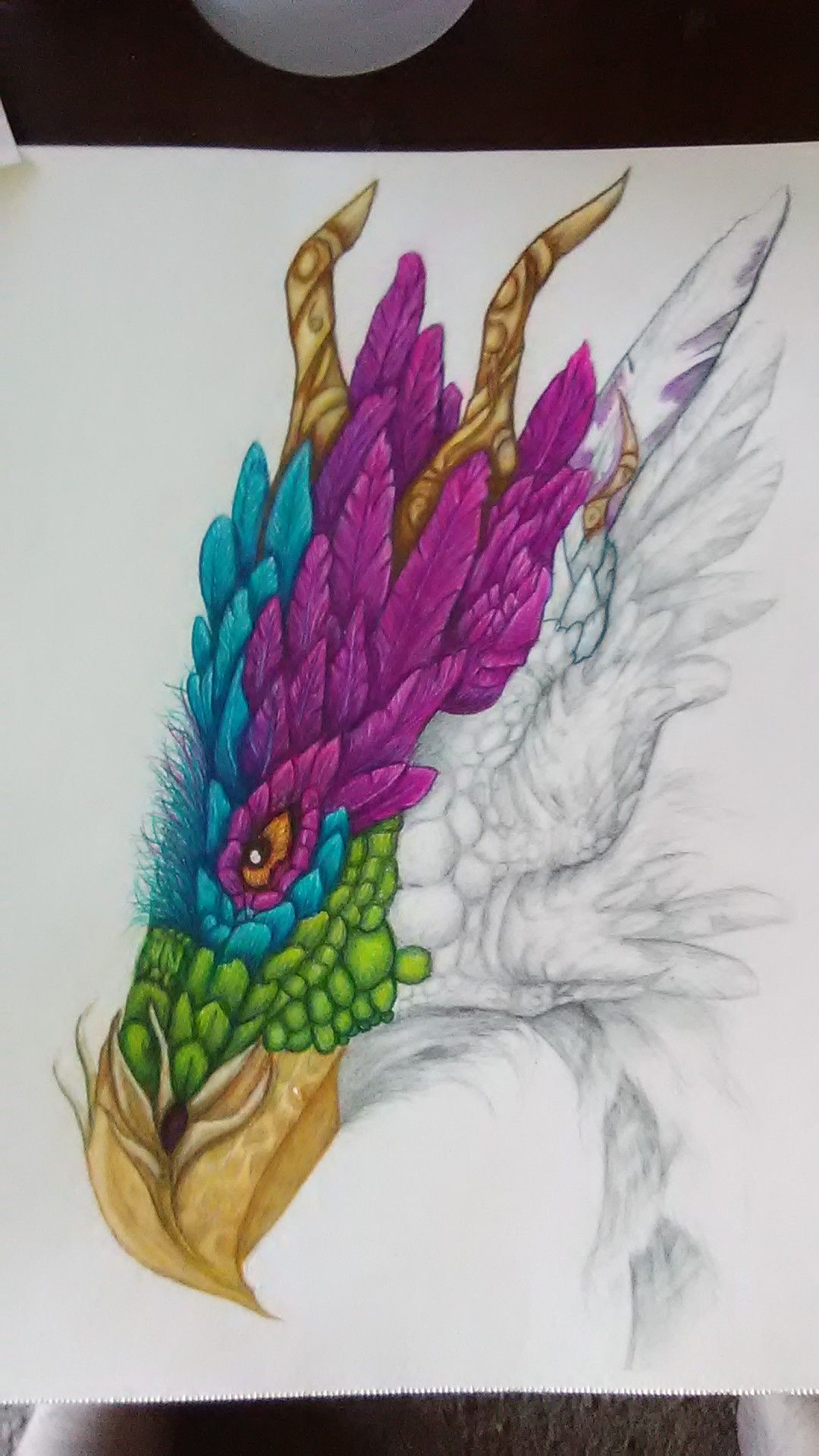 My Dragon In Progress Using Prismacolor Premier Colored Pencils