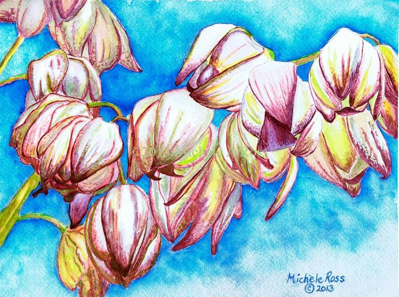 Watercolor Painting Yucca Blossom Watercolor Paintings Painting