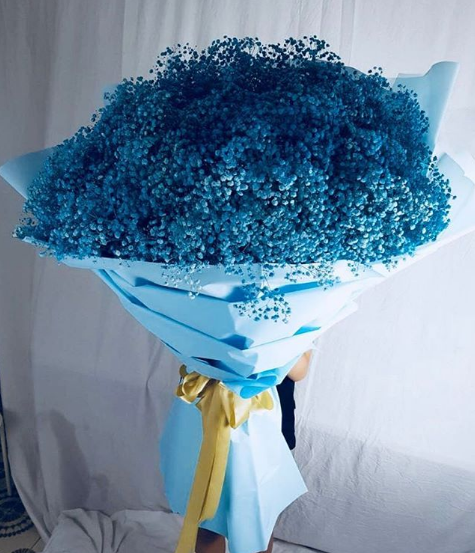Baby Breath Singapore Why You Give Them Baby Breath Flower Flower Delivery Singapore Babys Breath Flower Delivery Flowers