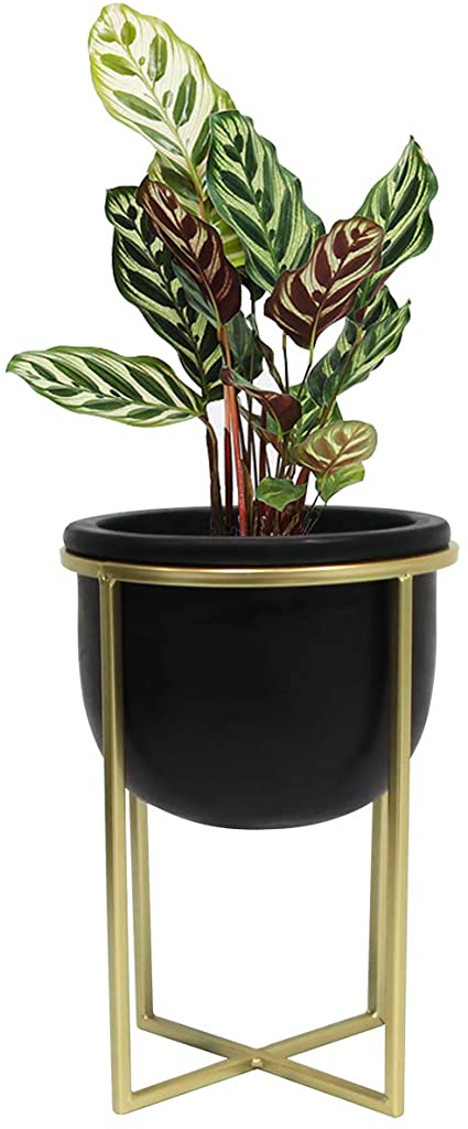 Flower Pot Mid Century Planter - 6.3 Inch Black Cement Round Decorative Tabletop Plant Pot Indoor with Gold Metal Stand for Succulents Cactus Herb Orchid, Desk Decor Gift
