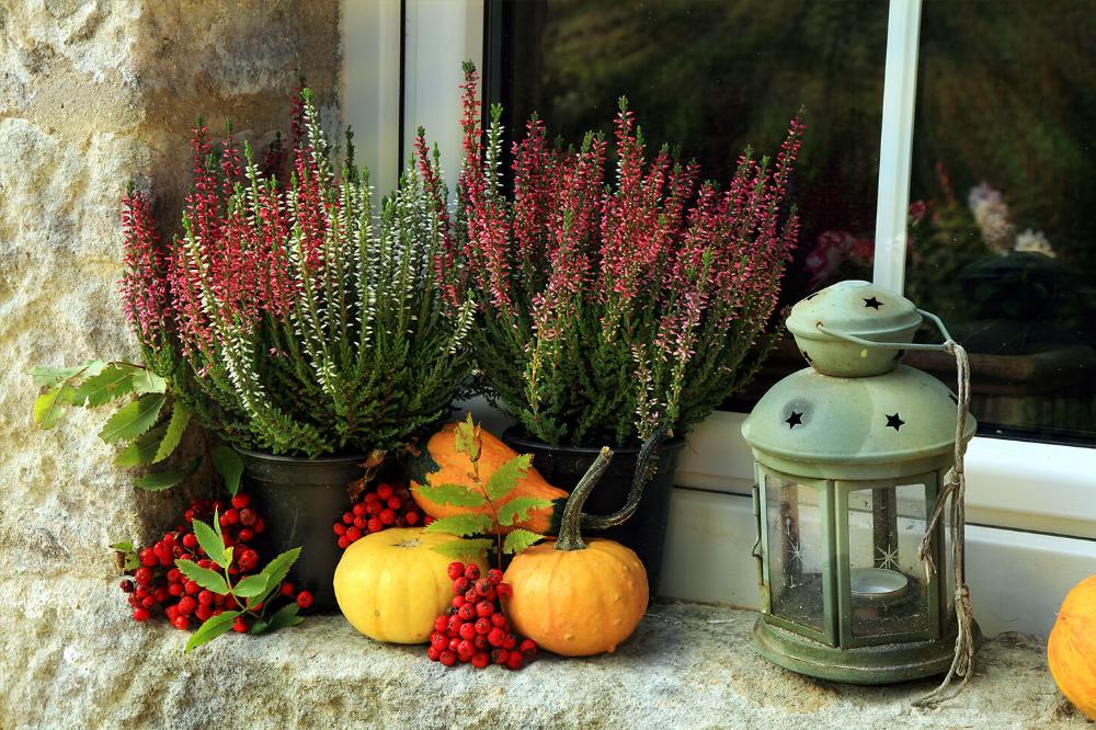 Jesienny Balkon W Bloku Szukaj W Google Window Sill Decor Window Sill Garden Design