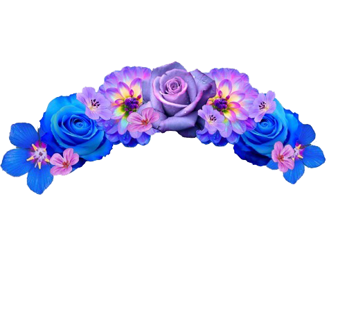 Discover Trending Flower Stickers Flowers Crown Png Flower Crown