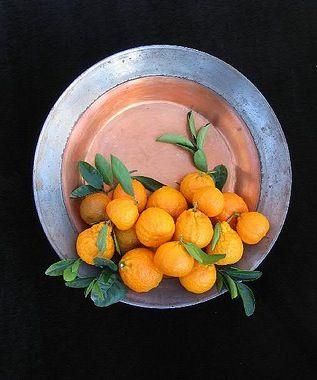 Gold Nugget Mandarin Citrus Trees Perfect Pots Citrus