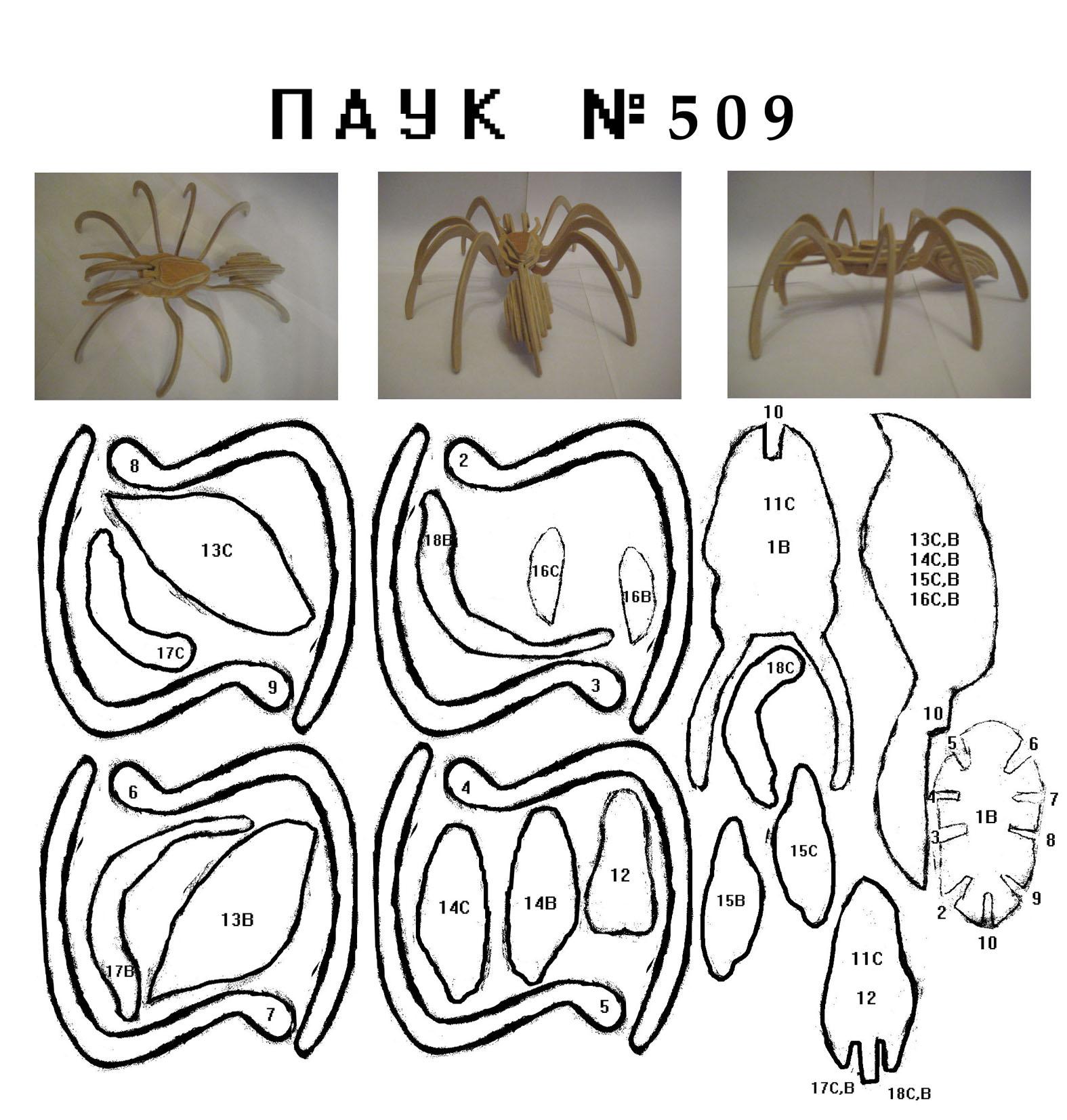 Schön Tarantula Malvorlagen Fotos - Beispiel Anschreiben für ...