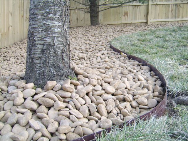 Great Idea For Back Fence Might Keep The Dogs From Digging Out Too Green Hills Tn Nashville Landscaping With Rocks Rock Garden Landscaping River Rock Garden