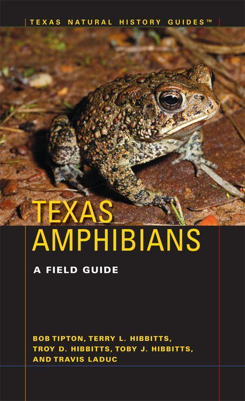 Texas Amphibians A Field Guide By Bob L Tipton Terry L Hibbitts Troy D Hibbitts Toby J Hibbitts And Travis J Laduc Field Guide Amphibians Texas