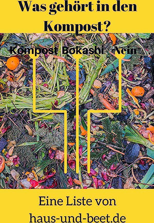 Photo of Was gehört in den Kompost und in den Bokashi Eimer? – Haus und Beet