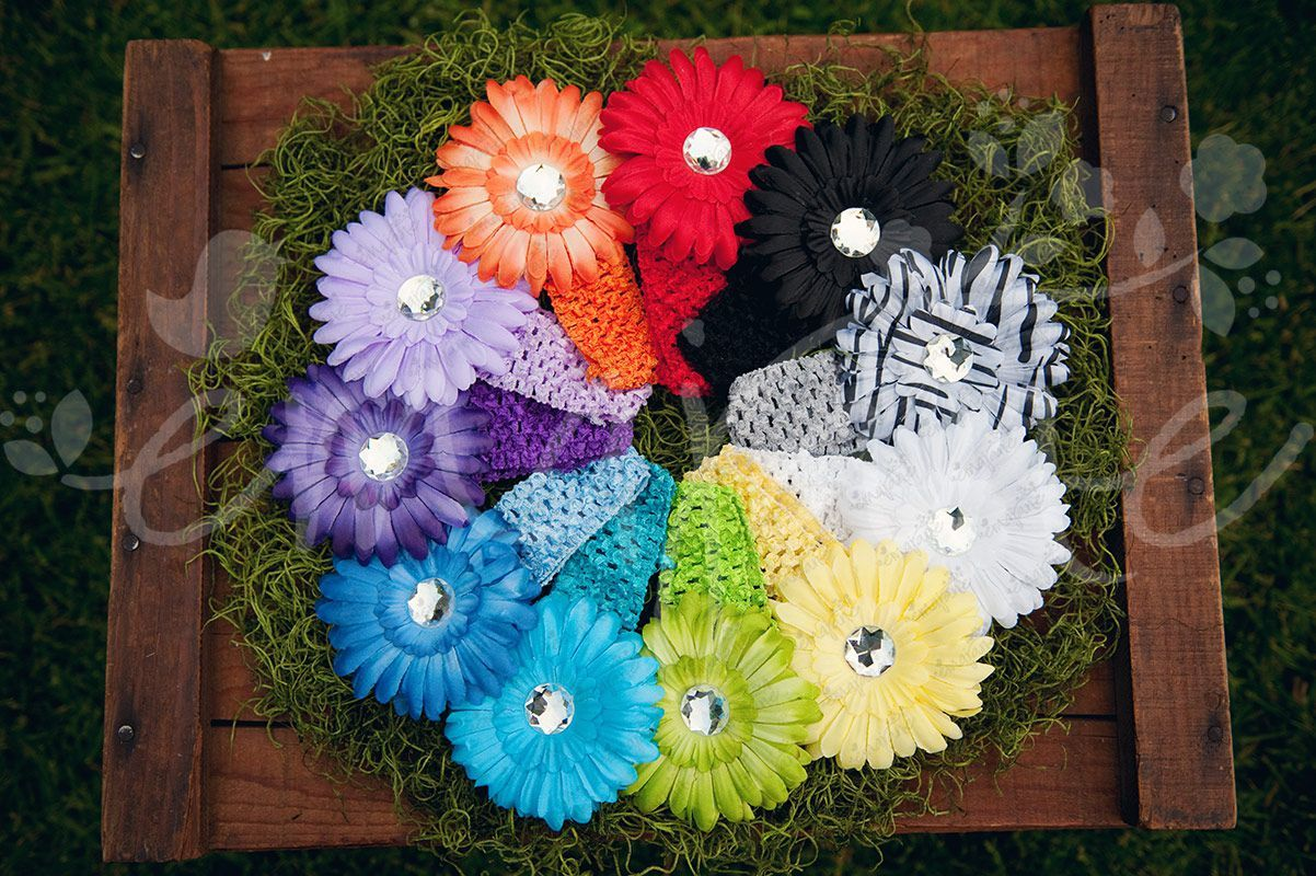 16 Bright And Colorful Ema Jane Quality Gerber Daisy Flower Hair