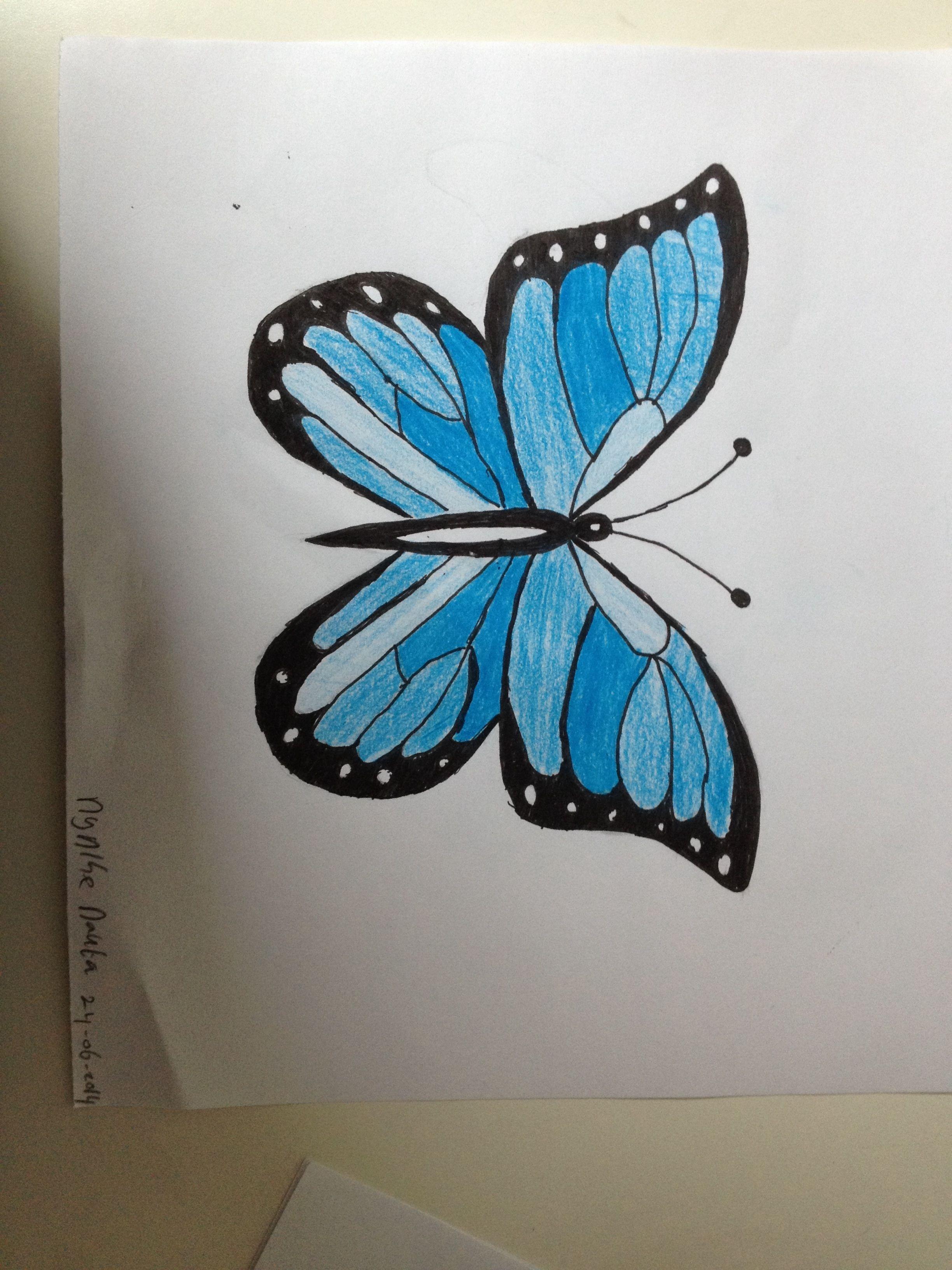 Vlinder Vlinder Tekening Vlinders Herten Tekening