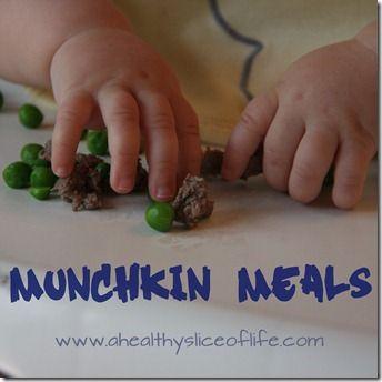 18 Months Munchkin Meals