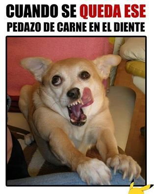 Hilarious Memes En Espanol Funny Humor Humor Engracado Memes Do Twitter Wtf Wow Divertido Imagenes Graciosas Ifunny Memes Funny Memes Best Memes