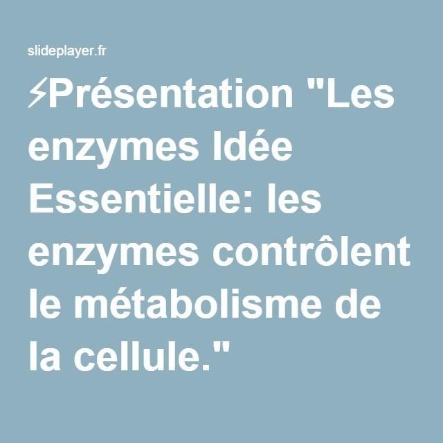 """⚡Présentation """"Les ENZYMES Idée Essentielle: les enzymes contrôlent le métabolisme de la cellule."""" PDF (2015) 44 pages"""