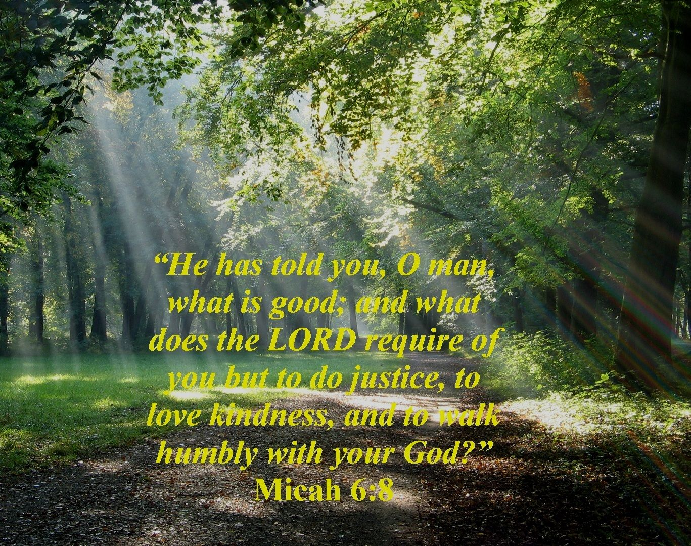 What Does God Require Of His People Micah 6 8