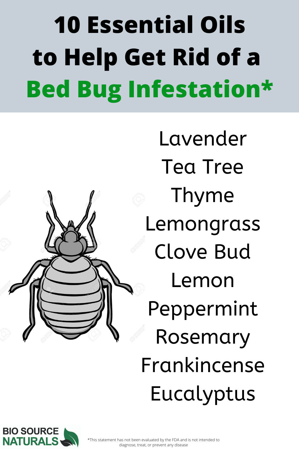 Essential Oils That Can Help With Those Pesky Bed Bugs in