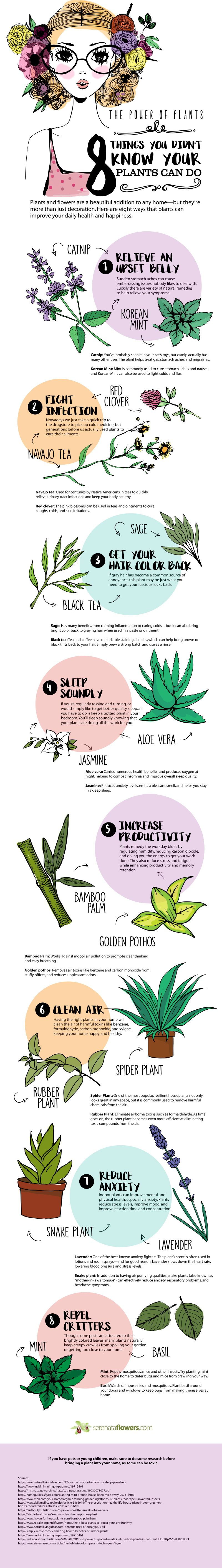 8 Things you Didn't Know your Plants Can Do #Infographic