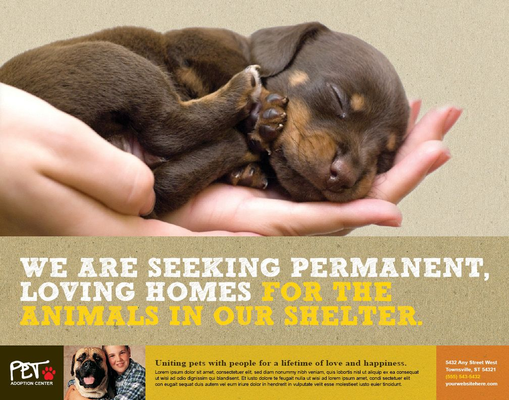 Animal Shelter Volunteer Recruitment Flyer Templates Invitation Templates Animal Shelter Volunteer Pet Adoption Center Animals