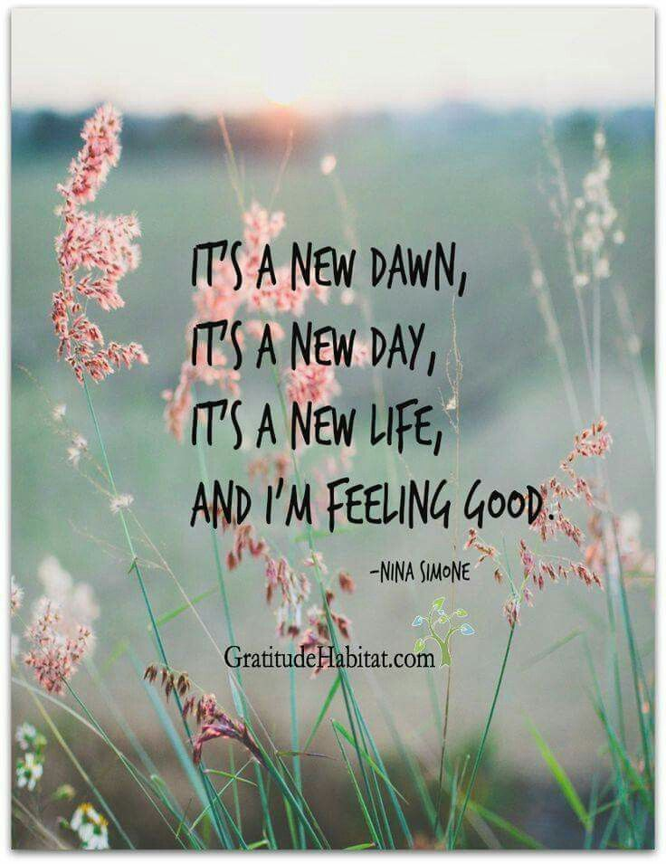 It S A New Dawn Feel Good Quotes New Day Quotes Quotes Inspirational Positive