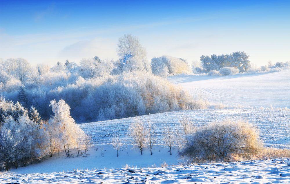 Winter Wonderland Images Of Stunning Snowy Landscapes Winter Wallpaper Winter Landscape Winter Wonderland