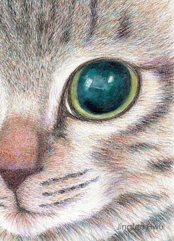 Cat Art Print Part Of A Cute Kitten Face Watercolor Pencil