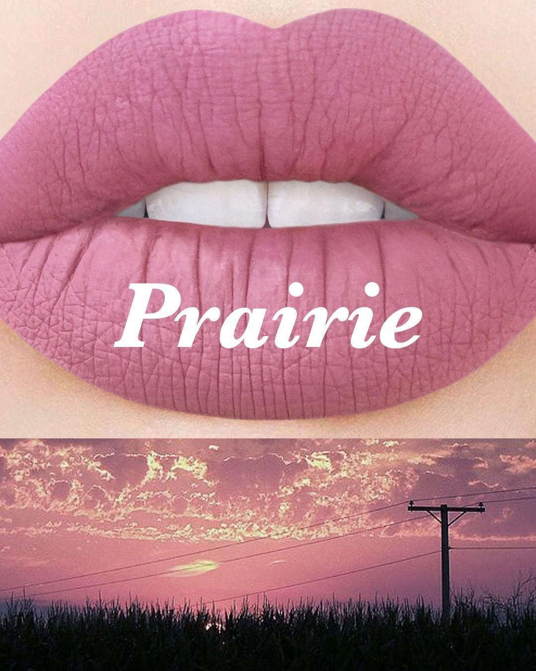 PRAIRIE - dusky nude Coming soon! Subscribe on limecrime ...