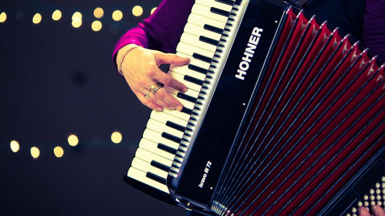 How to Play a Piano Accordion Piano accordion, Learn