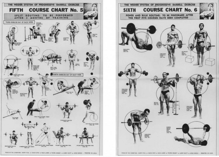 Vintage Infodesign 24 Barbell Exercises Exercises And