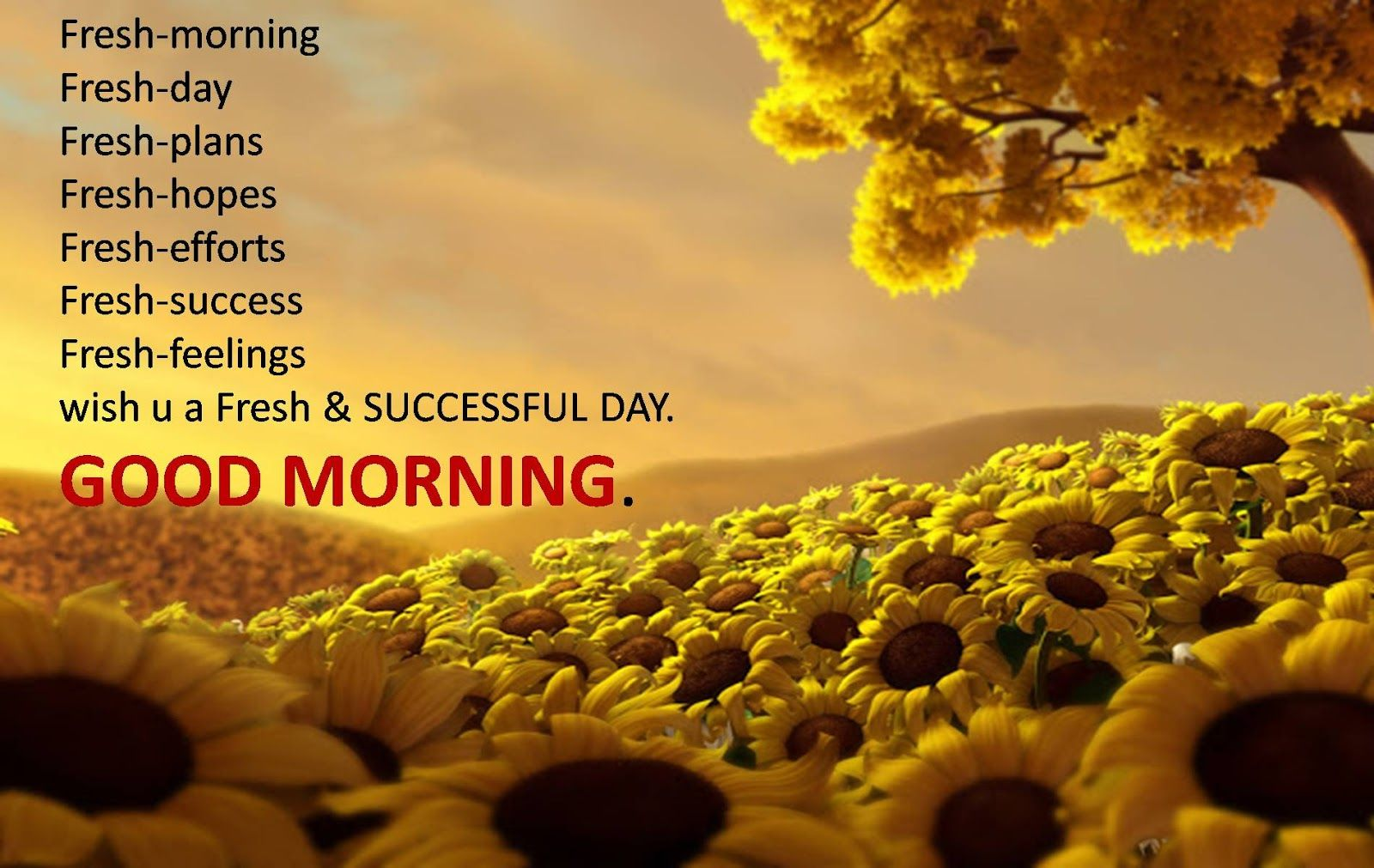 Khushi For Life Fresh Gud Morning Wishes Messages Sms Images Live