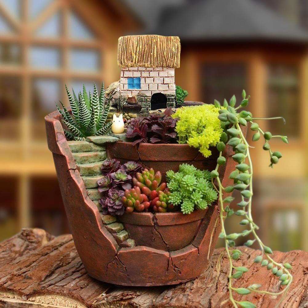 Cute mini succulent planter flower plant bonsai pot micro