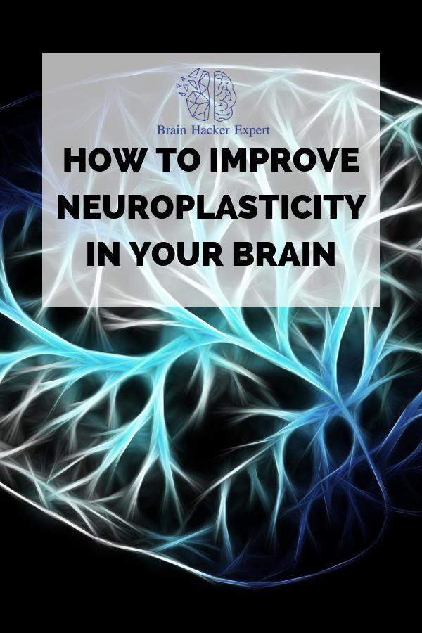How to Improve Neuroplasticity in Your Brain   Brain Hacker Expert