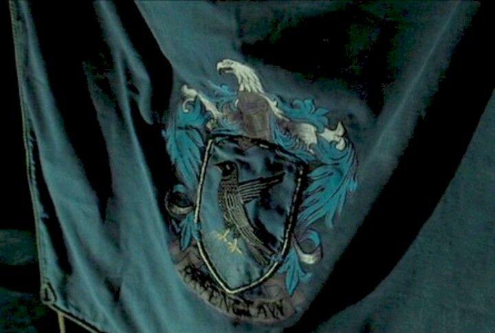 The Ravenclaw Flag Ravenclaw Aesthetic Ravenclaw Hogwarts Aesthetic
