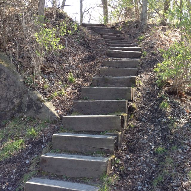 Steps to Taughannock Falls overlook, Ithaca, NY | Nature
