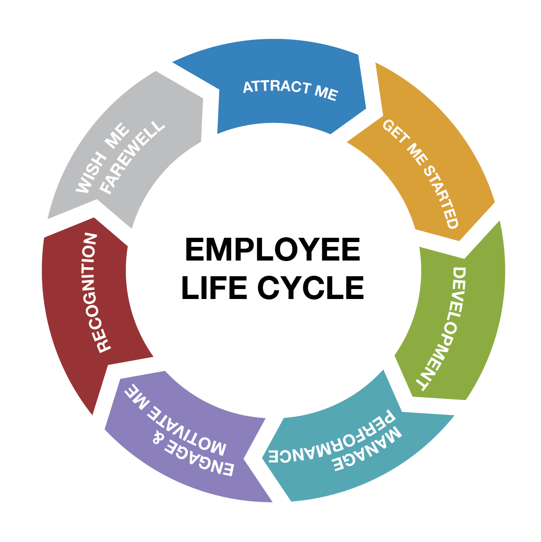 employee life cycle info graphic hr management talent management leadership development training business [ 1140 x 1142 Pixel ]