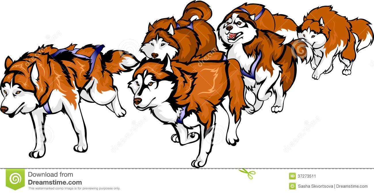 r sultat de recherche d images pour dog sled race drawing  [ 1300 x 676 Pixel ]