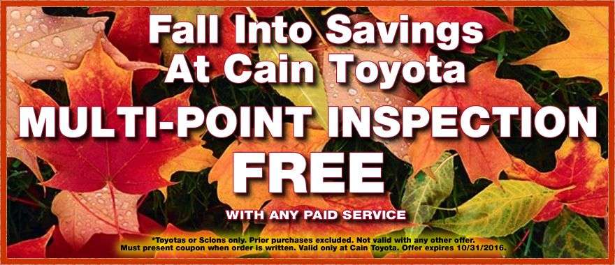 Get a FREE MultiPoint Inspection with any paid service