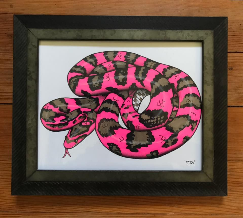 30+ Corn snake coloring page ideas in 2021