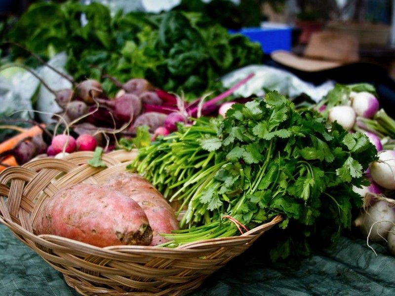 HOPE Farm Stand Project wants to buy your homegrown produce