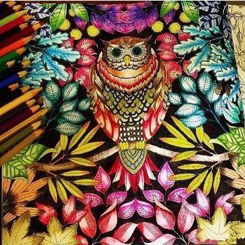 Aliexpress Comprar Secret Garden Coloring Book Para El Adulto Aliviar Estres Relax