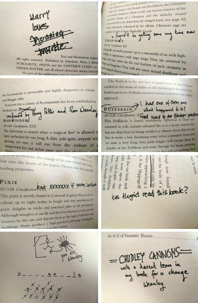 Pin by Anna Lund on Harry Potter Pinterest Harry potter - has no objection
