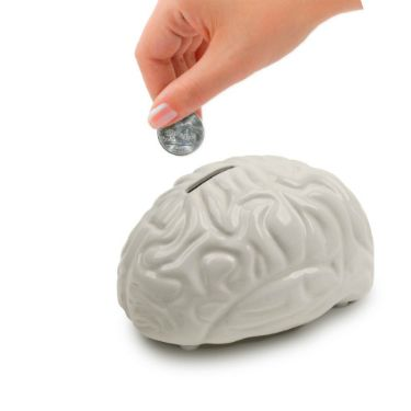 Brain Bank :: The Slate Store