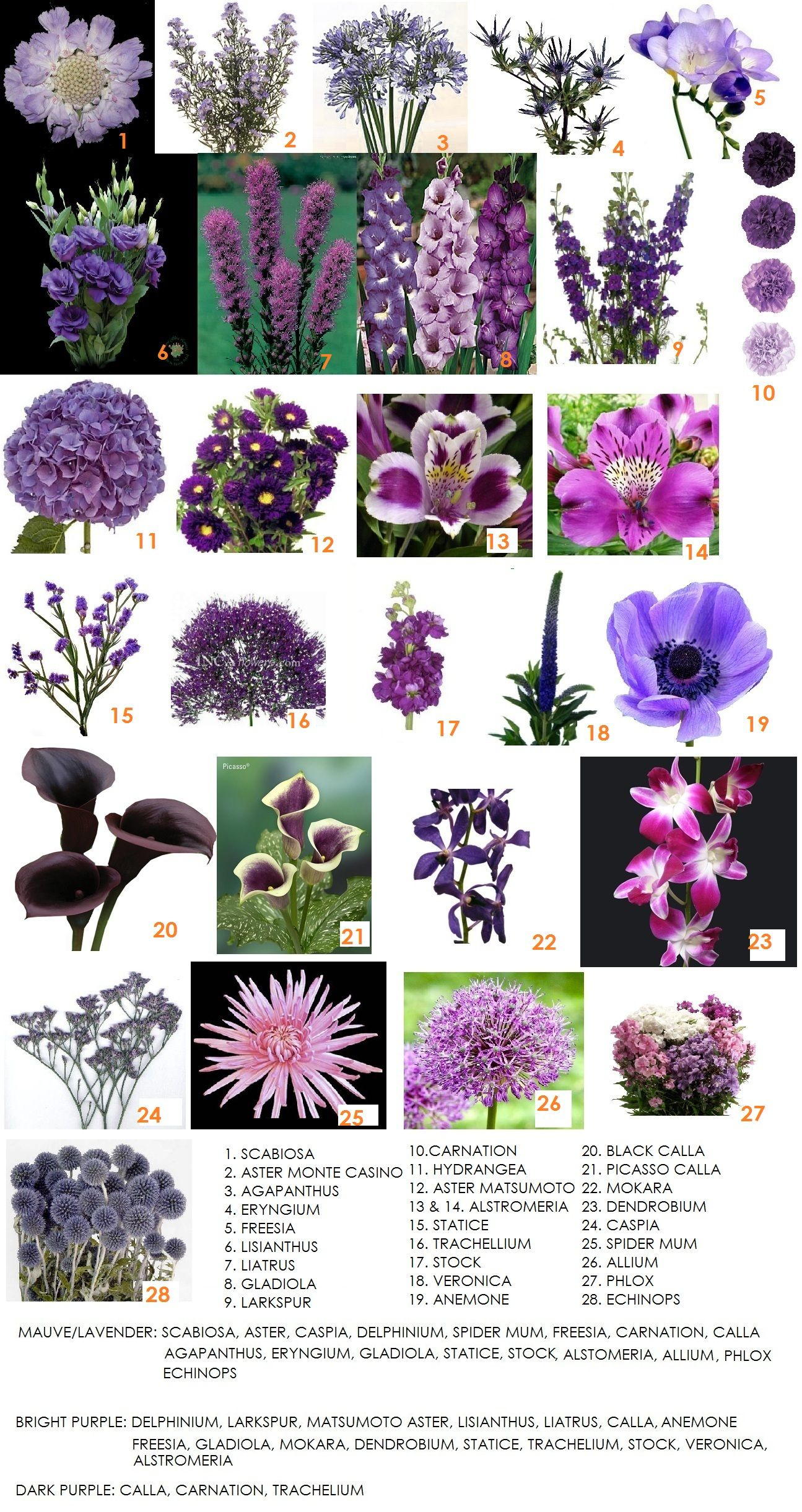 Second in our series on color – Purple | Purple bouquets, Purple ...