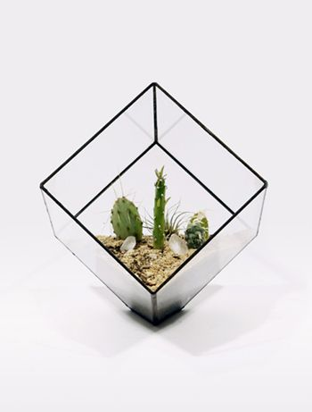 terrariums and planters // score and solder