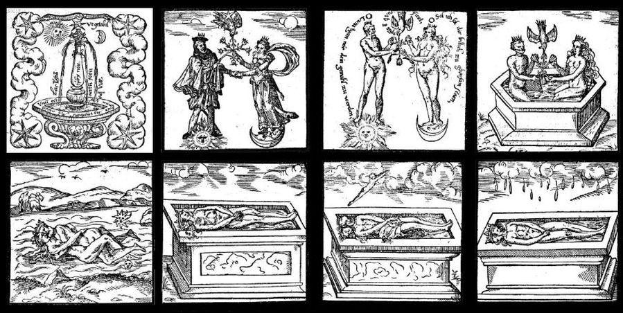 Das Rosarium. Von C. G. Jung gedeutet im Hinblick auf den Übertragungsprozess und das Geheimnis der seelischen Wandlung.